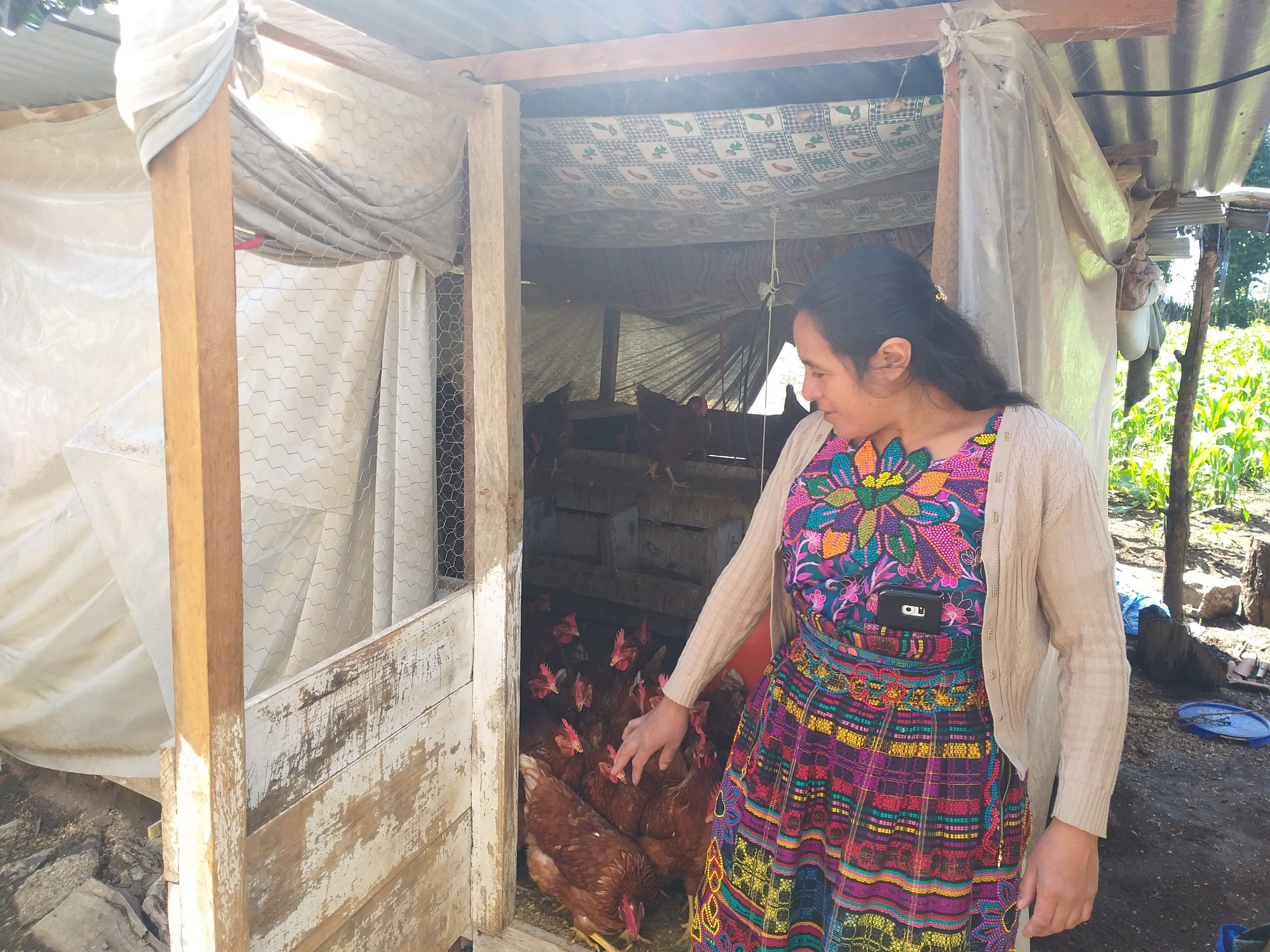 Ministerio de Agricultura Ganadería y Alimentación fortalece a grupos CADER en el área de Chuyujup